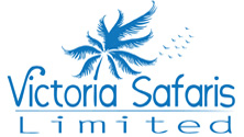 Victoria Safaris Limited